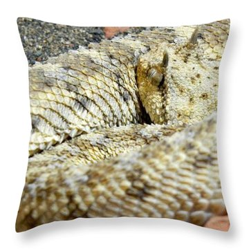 Desert Horned Viper Throw Pillow