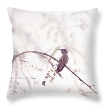 Desert Hummingbird II Throw Pillow