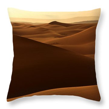 Desert Impression Throw Pillow