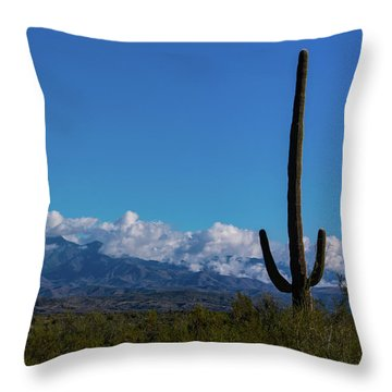 Desert Inversion Cactus Throw Pillow