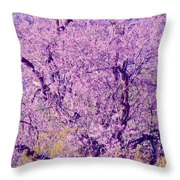 Desert Ironwood  Beauty 2 Throw Pillow
