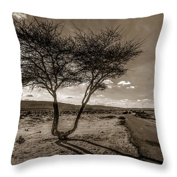 Desert Landmarks  Throw Pillow