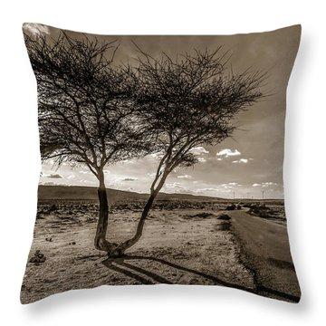 Desert Landmarks  Throw Pillow