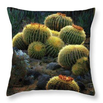 Throw Pillow featuring the photograph Desert Lanterns by Melinda Hughes-Berland