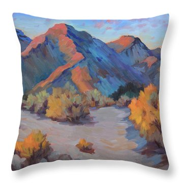 Throw Pillow featuring the painting Desert Light by Diane McClary