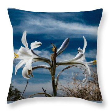 Desert Lilly Close Up Throw Pillow