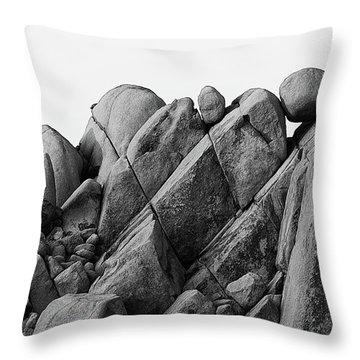 Desert Math Throw Pillow