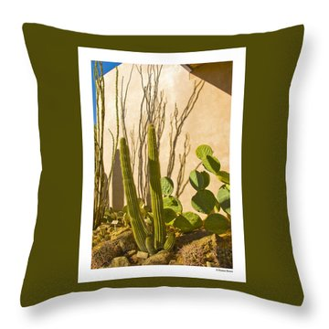 Desert Museum Throw Pillow