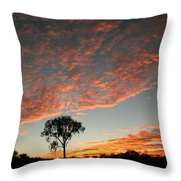 Throw Pillow featuring the photograph Desert Oak Tree Silhouetted At Sunrise by Keiran Lusk