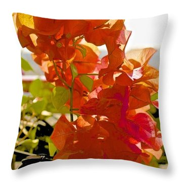 Desert Orange Throw Pillow