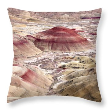 Desert Palette Throw Pillow by Mike  Dawson