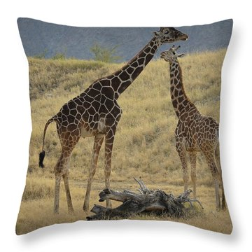 Desert Palm Giraffe Throw Pillow
