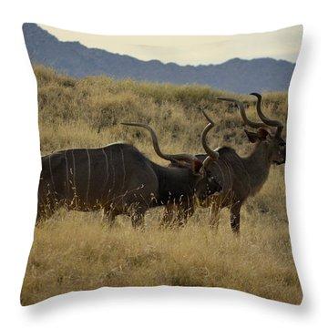 Desert Palm Landscape Throw Pillow