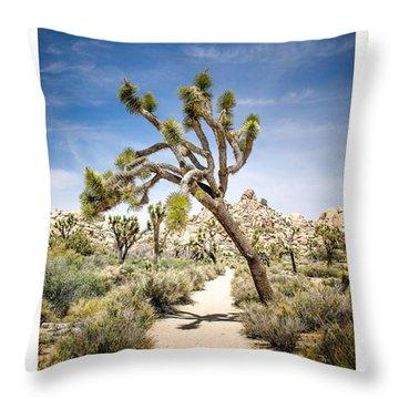 Desert Throw Pillows