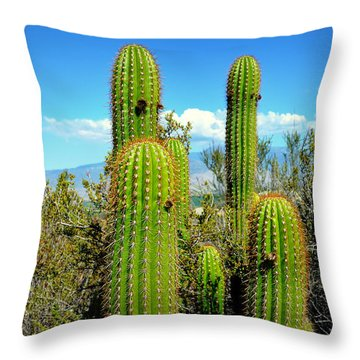 Throw Pillow featuring the photograph Desert Plants - All In The Family by Glenn McCarthy