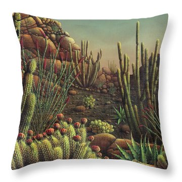 Desert Potpourri  Throw Pillow