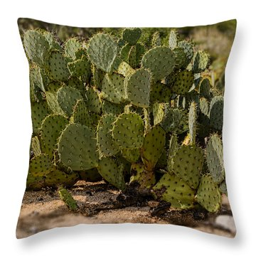 Desert Prickly-pear No6 Throw Pillow by Mark Myhaver