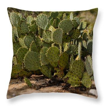 Desert Prickly-pear No6 Throw Pillow