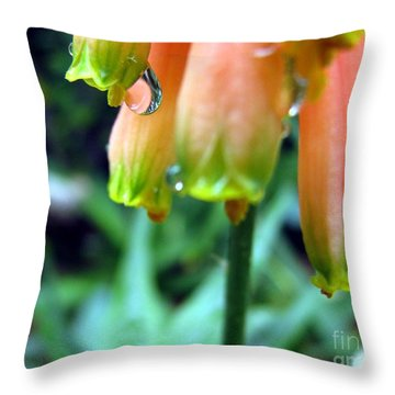 Desert Rain Throw Pillow