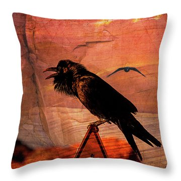 Throw Pillow featuring the photograph Desert Raven by Mary Hone