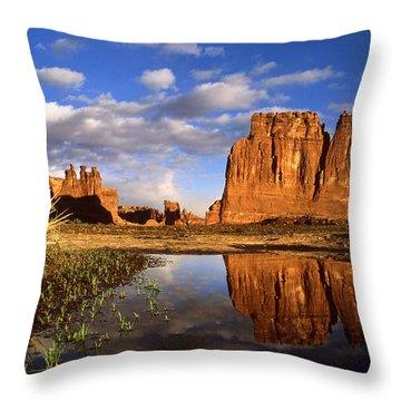 Desert Reflections Throw Pillow