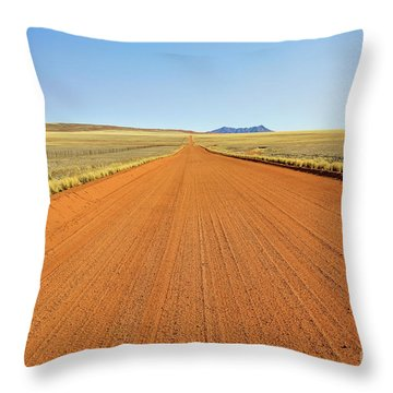 Desert Road Throw Pillow