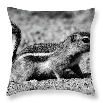 Scavenger, Black And White Throw Pillow