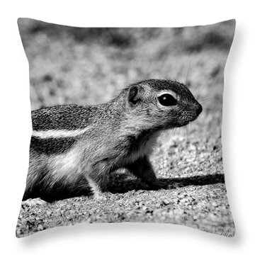 Scavenger, Black And White Throw Pillow
