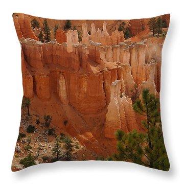 Desert Sentinels Throw Pillow