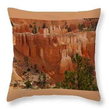 Desert Sentinels Throw Pillow