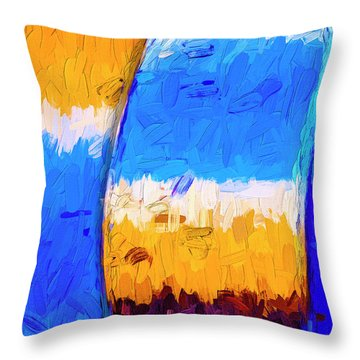Throw Pillow featuring the photograph Desert Sky 3 by Paul Wear