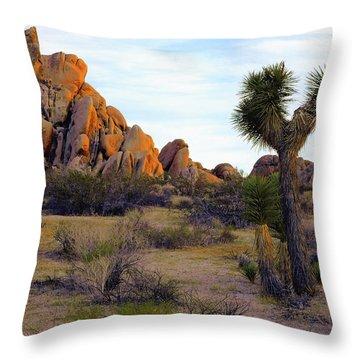 Desert Soft Light Throw Pillow