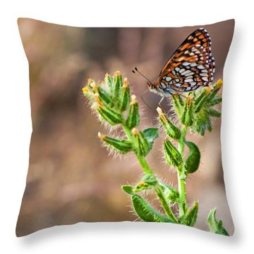 Desert Spring Life Throw Pillow