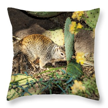Desert Squirrel Throw Pillow by Lawrence Burry