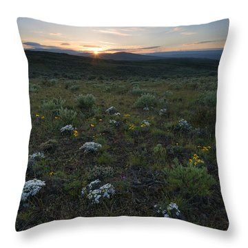 Desert Sunburst Throw Pillow