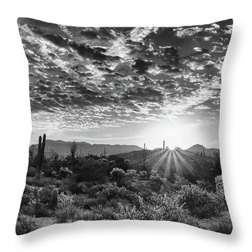 Throw Pillow featuring the photograph Desert Sunrise by Monte Stevens