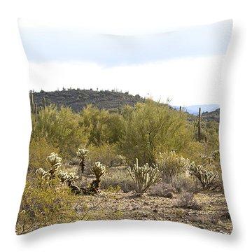 Throw Pillow featuring the photograph Desert Sunrise by Phyllis Denton