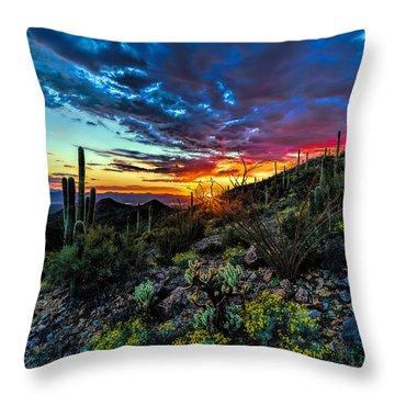 Desert Sunset Hdr 01 Throw Pillow