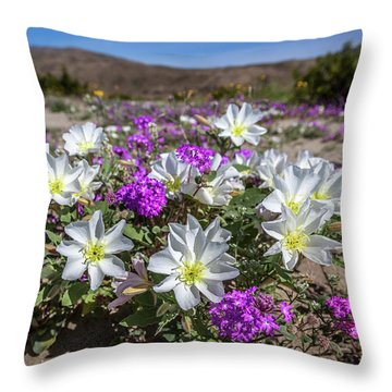 Throw Pillow featuring the photograph Desert Super Bloom 2017 by Peter Tellone