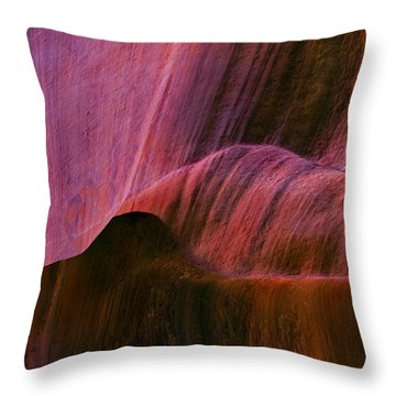 Desert Tapestry Throw Pillow by Mike  Dawson