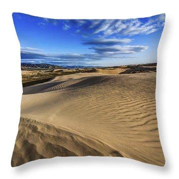 Desert Texture Throw Pillow