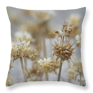 Desert Thistles Throw Pillow by Sue Cullumber