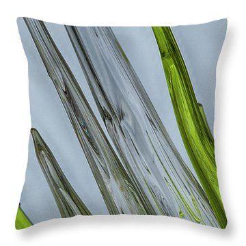 Glass Throw Pillow by Anne Rodkin