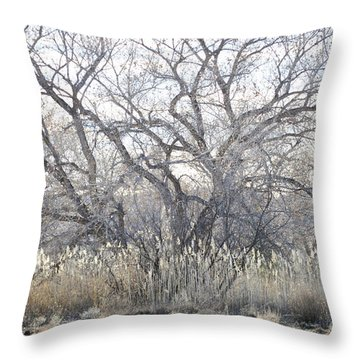 Throw Pillow featuring the photograph Desert Tree Willows by Andrea Hazel Ihlefeld