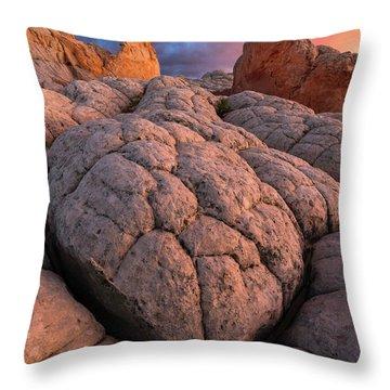 Desert Turtle Throw Pillow