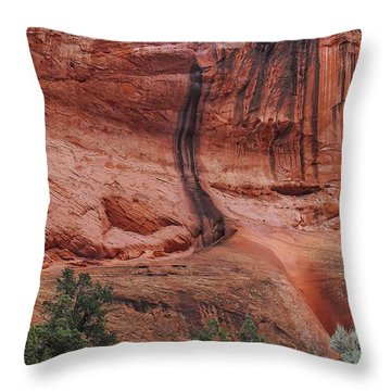 Desert Varnish Along Burr Trail Throw Pillow