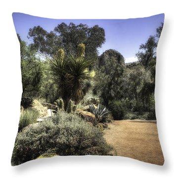 Desert Walkway Throw Pillow