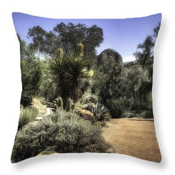 Desert Walkway Throw Pillow by Lynn Geoffroy