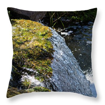 Desert Waterfall Throw Pillow