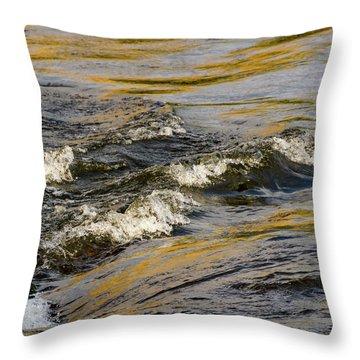 Desert Waves Throw Pillow